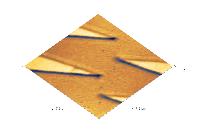 Vanadium test grating. AFM image. Topography 3D.