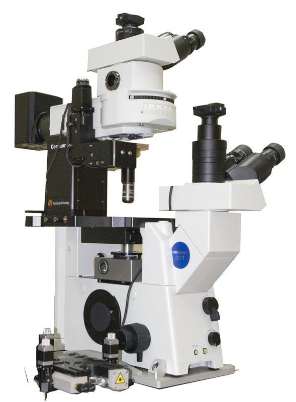 Certus Optic Dous