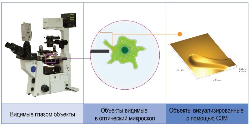 Certus Optic I - основные принципы