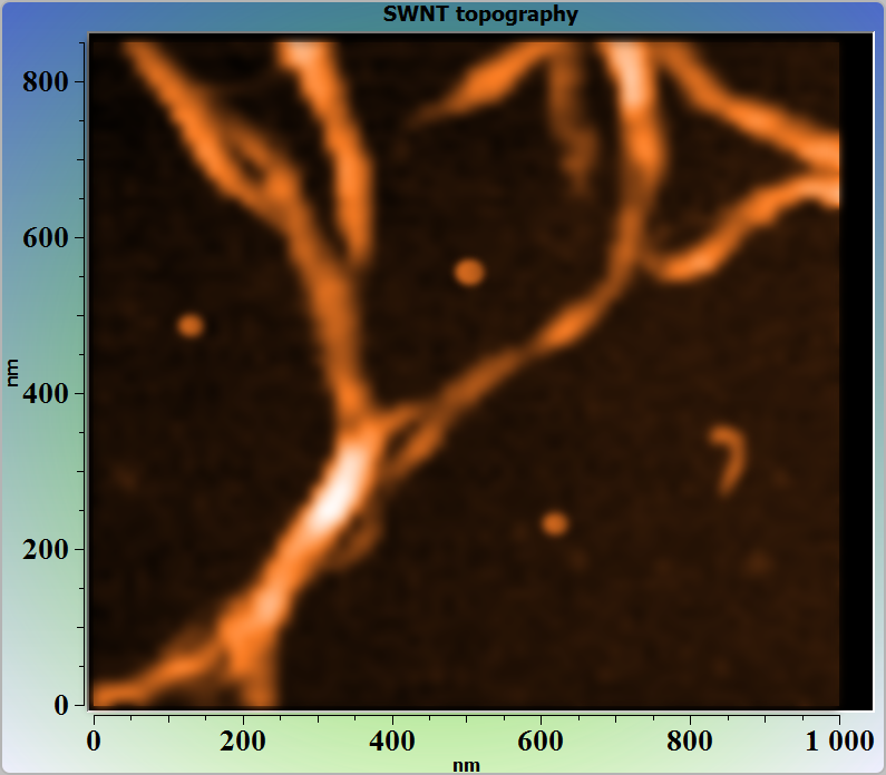 SWNTs. AFM image. Topography.