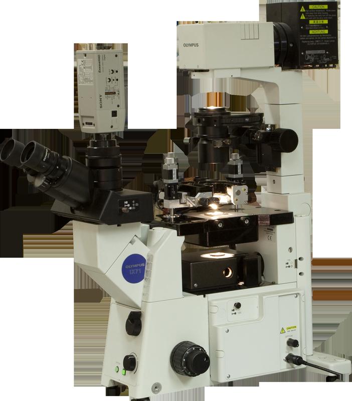 Certus Optic I - cканирующий зондовый микроскоп (СЗМ) Certus Optic I на базе Olympus  IX71